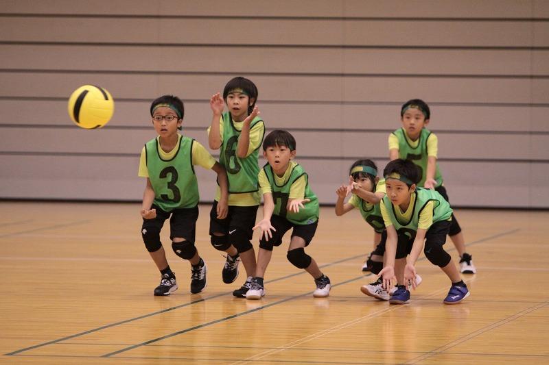 全員でキャッチ(写真:富山県協会)